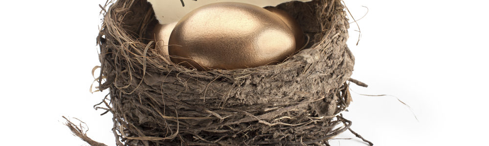 More Planning Made Simple: How to Avoid Scrambling Your Retirement Nest Eggs