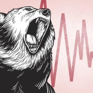 Face Facts: We're in a Bear Market